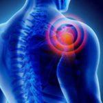 Prévention des troubles Musculo Squelettiques
